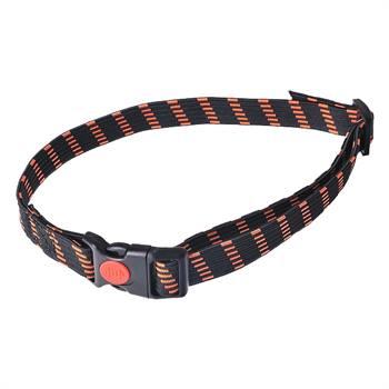 24493-1-collier-elastique-25-mm-de-largeur-orange.jpg
