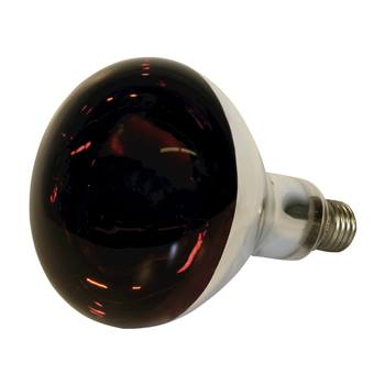 80320-1-lampe-infrarouges-150-watts-verre-trempe-ampoule-infrarouges-ampoule-a-incandescence-infraro