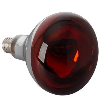 Lampe infrarouges 250 watts, verre trempé - ampoule infrarouges, ampoule à incandescence infrarouges, rouge
