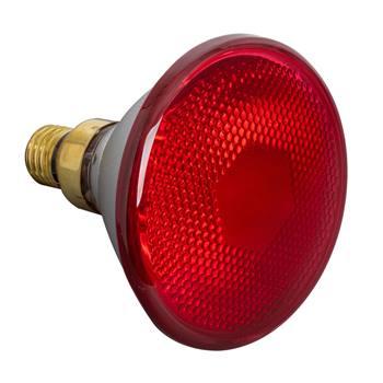 Lampe infrarouges basse consommation PAR 38, 175 W - Lampe, ampoule à infrarouges à économie d'énergie, rouge