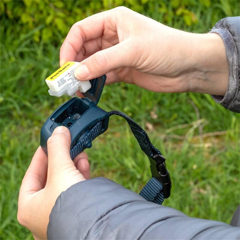 2114-8-collier-anti-aboiements-innotek-by-petsafe-avec-spray-au-citron-ou-sans-odeur.jpg