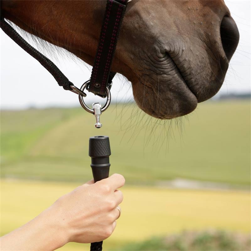 501295-5-2-x-goupilles-adapteurs-goleygo-pour-licol-de-cheval.jpg