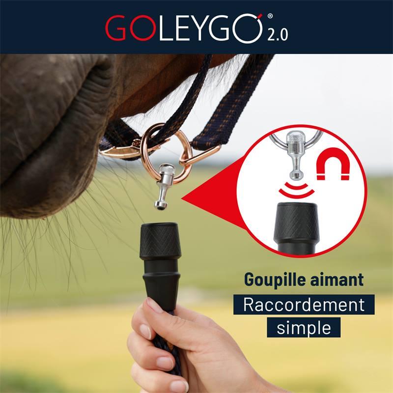 501295-goleygo-goupille-aimant-raccordement-simple.jpg