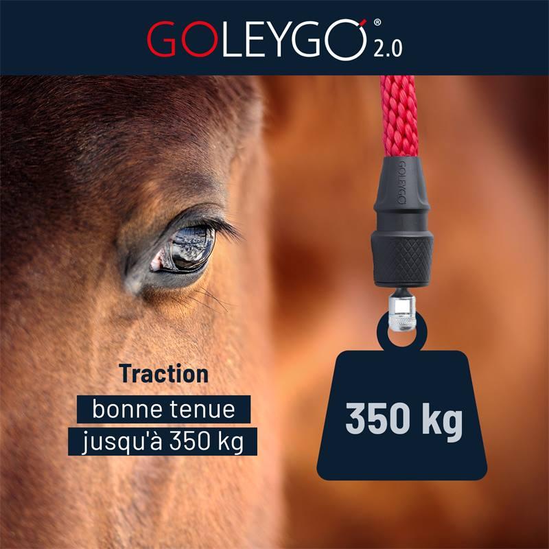 501295-goleygo-traction-bonne-tenue-jusqu-a-350-kg.jpg