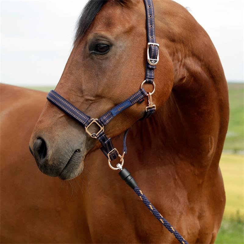 501705-3-longe-goleygo-v2-pour-licol-de-cheval-bleu-caramel.jpg