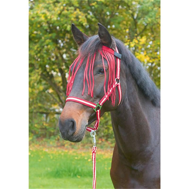 505511-1-bandeau-a-franges-anti-mouches-pour-chevaux-et-poneys-rouge-fonce.jpg