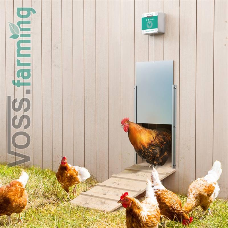 561852-3-voss-farming-chicken-door-portier-automatique-électronique-pour-poulailler.jpg