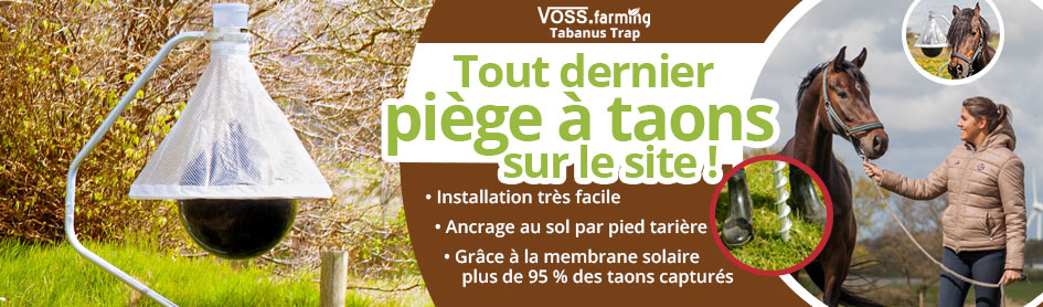 Protection contre les insectes