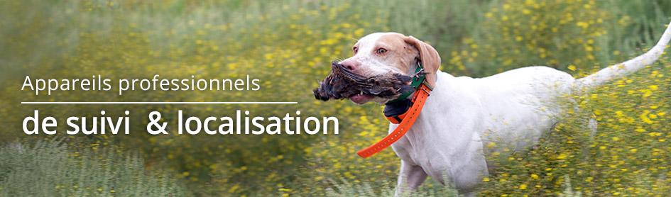 Localisation des chiens