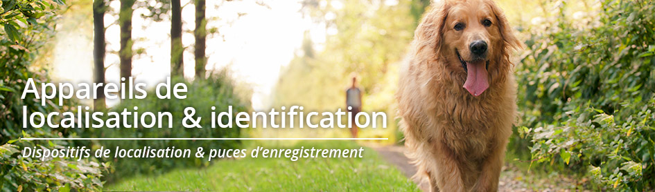 Localisation & identification des chiens