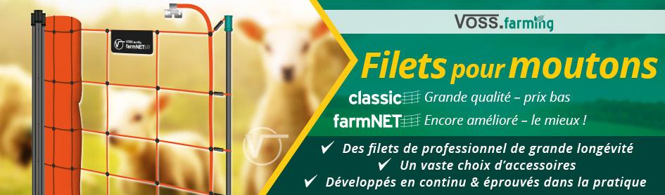 Filets pour ovins