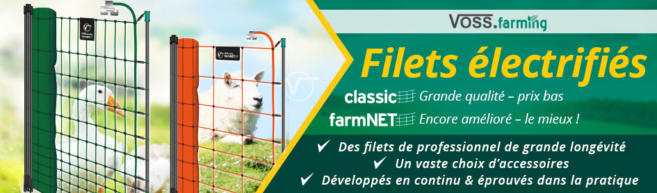 Filets - coloris vert