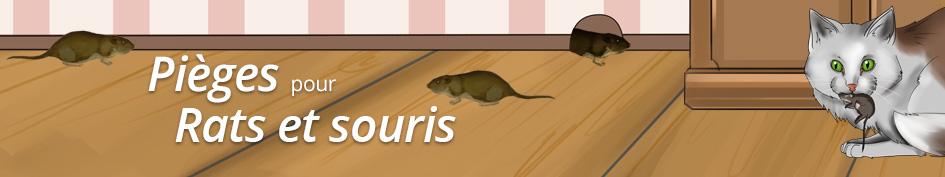 Protection/Pièges à rats et souris