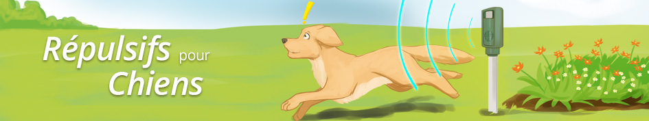 Répulsifs pour chiens