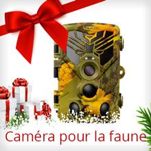 Caméra pour la faune