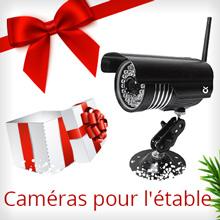 Caméras pour l'étable