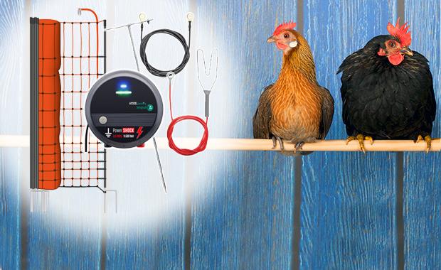 Kits complets de clôtures pour volailles